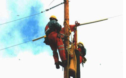 Utility Pole Maintenance - Repairs and Protection